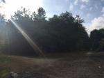 large chemin éclairé par un jet de soleil